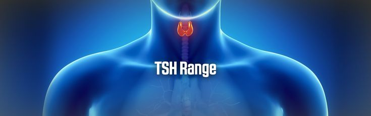 Confused about your recent thyroid test? Here is some information on TSH range.
