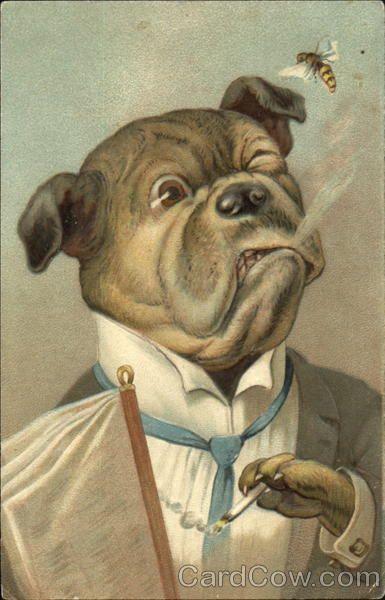 собака с сигарой для декупажа: 1 тыс изображений найдено в Яндекс.Картинках