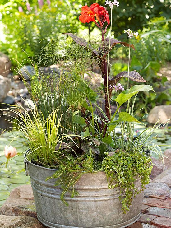 17 Best Images About Water Garden Creations On Pinterest Gardens Water Containers And Pathways