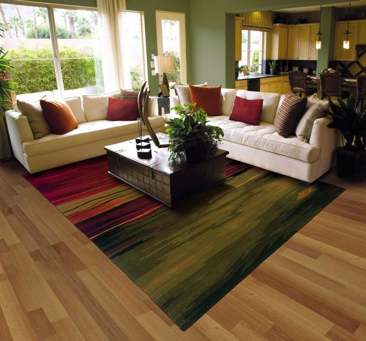 Large Living Room Area Rug In Beautiful Colors
