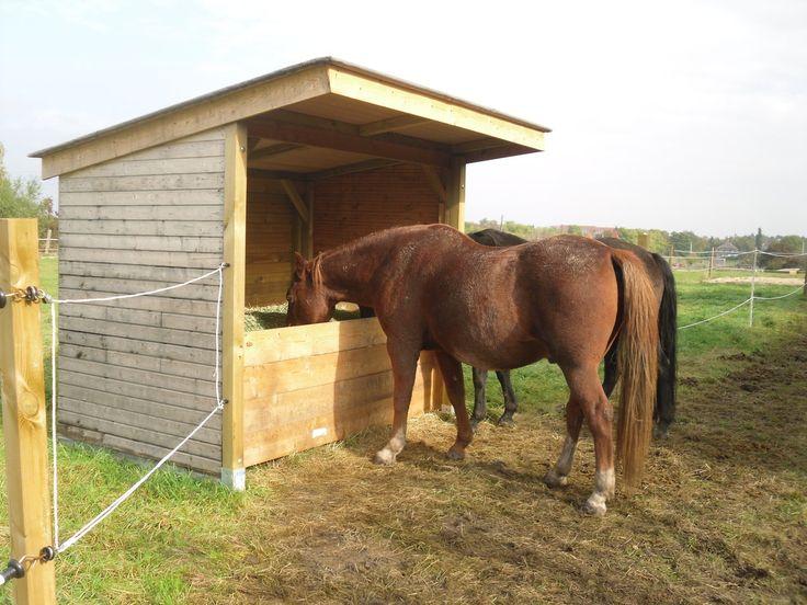 heu fressen an der n chsten raufe pferd pinterest heu pferde und pferdestall. Black Bedroom Furniture Sets. Home Design Ideas