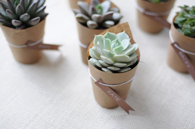 succulents. these are pretty cute, with a small tea light next to them?