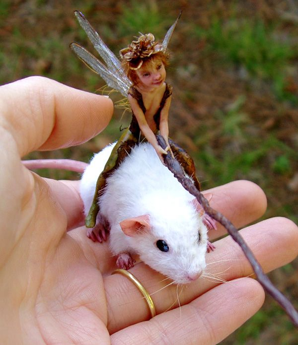 Mouse Bait  by ~pixiwillow  Lifesize sculptures of mouse and pixie. Both are sculpted from polymer clay. Mouse has real fur.