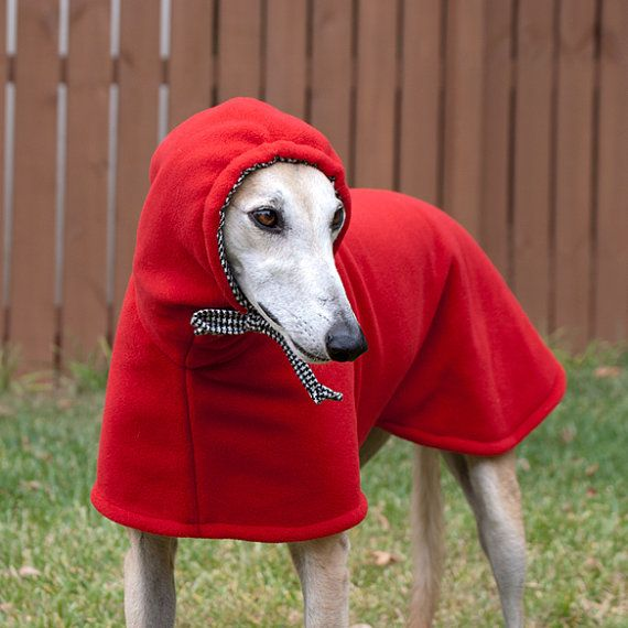 Too cute! Little Red Riding Hood warm winter coat. Too girly for my male Greyhound?......