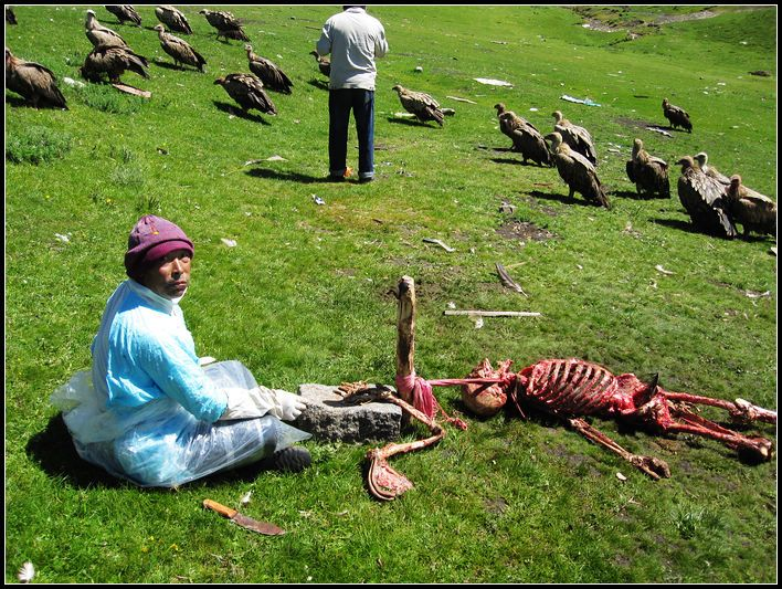 the sky burial a tibetan buddhist funeral tradition Dramatic funeral customs from this is where the tibetan buddhist ritual of a sky burial the world embalm bodies as part of a funeral ceremony although it.