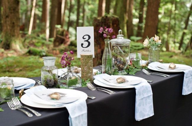 Forest outdoor reception