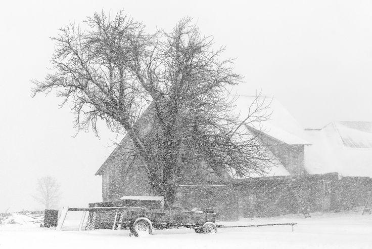 Heavy snow - .