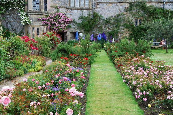 17 best images about designing with roses on pinterest for Garden design derbyshire