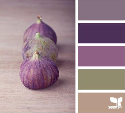 Premiers préparatifs du mariage: choisir la palette de couleurs ! | Pétunia & Cie.