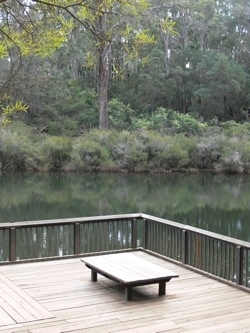 View onto Barrabup Pool in Nannup Forrest.