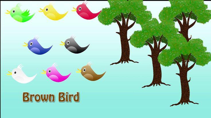 Belajar Warna Untuk Anak-anak dengan Gambar Burung