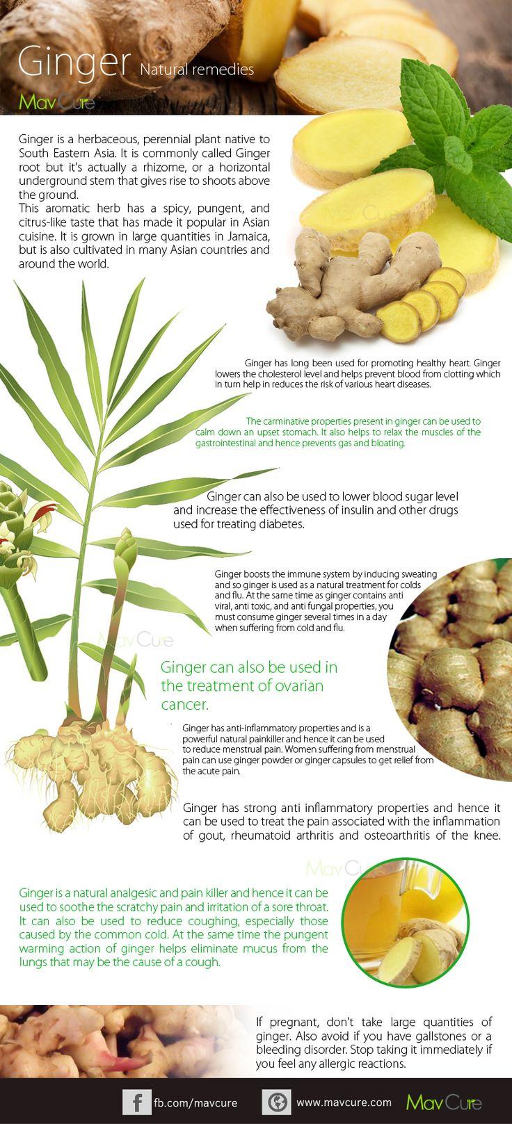 health benefits of ayurveda | ... Ginger Juice & Health Benefits Of Using It - MavCure | Raw Ayurveda