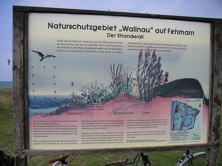 Category:Wallnau — Wikimedia Commons | Book cover ...
