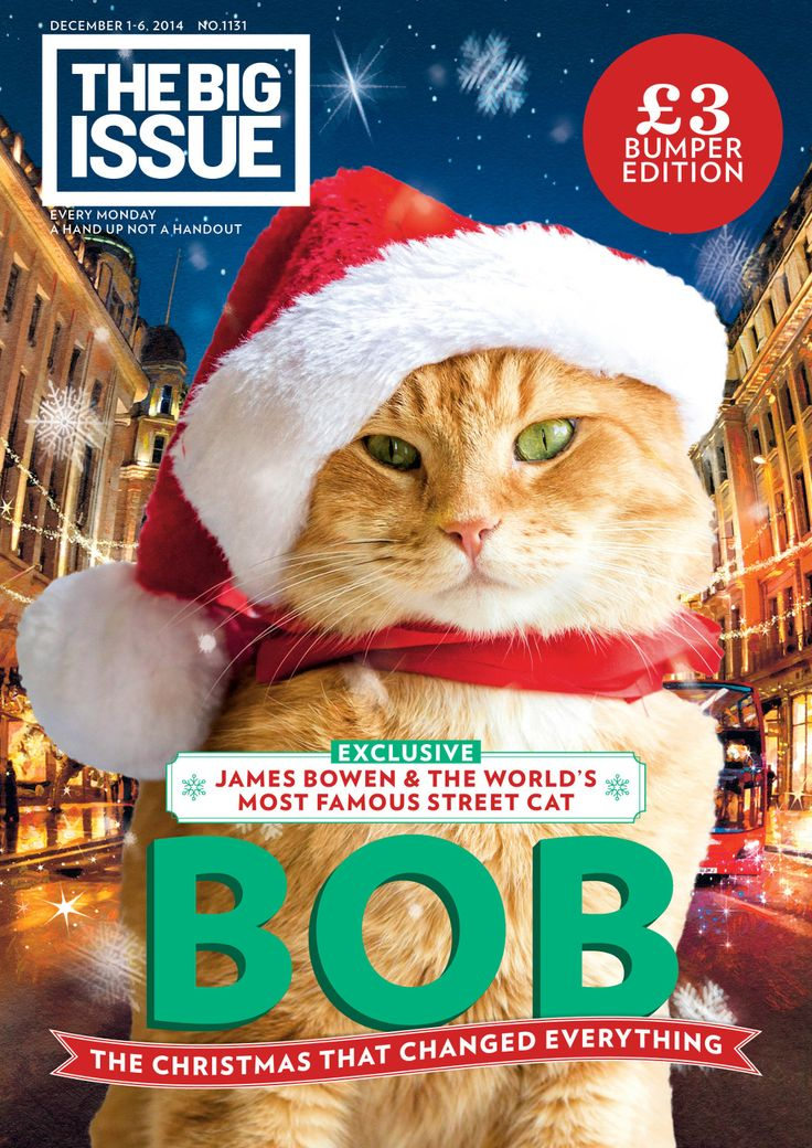 Exclusive tail from James Bowen and Street Cat Bob! The Christmas that changed everything...