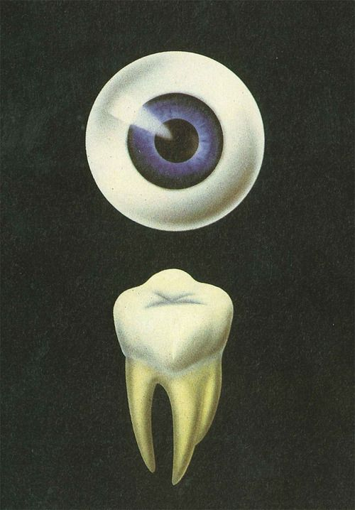 An eye for an eye, a tooth for a tooth//location undecided