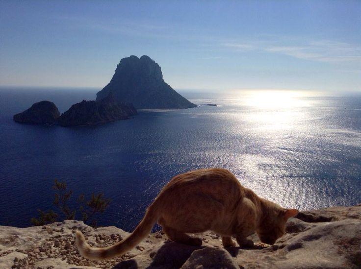 My beloved Ibiza.