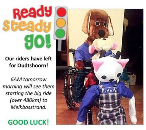 AND THEY'RE OFF! Wish these awesome folks well. This group of 20 riders and 11 support people (driving providing food, etc) is led by our own volunteer, Belinda. <3  Definitely an amazing endeavor to raise funds for the animals of Fisantekraal and surrounds. Imagine all the sterilisations we'll be able to do soon...  And, of course, our adorable mascots are going too.  They will be arriving at Melkbosstrand on Sunday at 12h00.