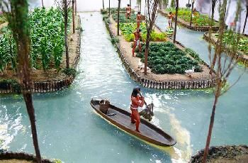 Chinampafarming system (sometimes called floating gardens) is a form of ancientraised field agriculture, used by American communities beginning at least as early as the 10th century AD. The word chinampa is from aNahuatl (native Aztec) word, chinamitl, meaning an area enclosed by hedges or canes. The term refers today long narrow garden beds, separated by canals. The garden land is built up from the wetland by stacking alternating layers of lake mud and thick mats of decaying vegetation…