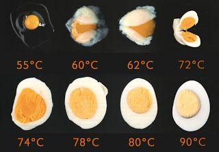 Gastronomixs Dutch: Techniek: Eieren koken
