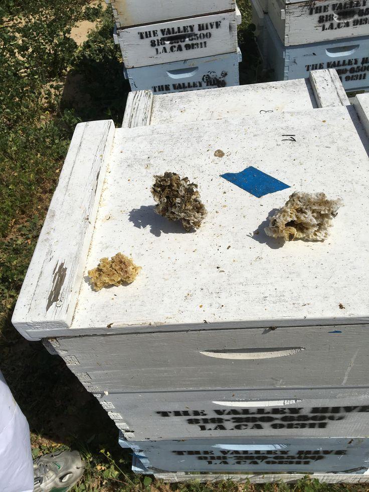 Natural beeswax