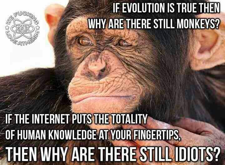 fe002f9fd115397441182bc88b7d8737--anti-religion-atheist.jpg