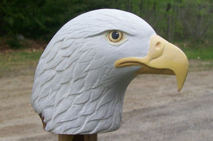 Walking Stick Eagle Carving Patterns - WoodWorking Projects & Plans