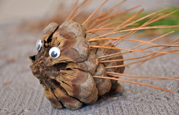 Come creare dei ricci con le pigne e gli aghi di pino
