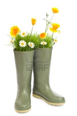 Flowers and grass in wellington boots - for a festival theme.