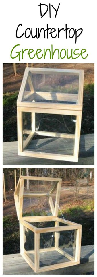DIY Countertop Greenhouse Tutorial