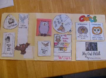 Owl Lapbook - lots of great owl activities to use.