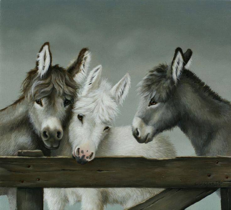 267 Best Images About Landelijke Schilderij On Pinterest