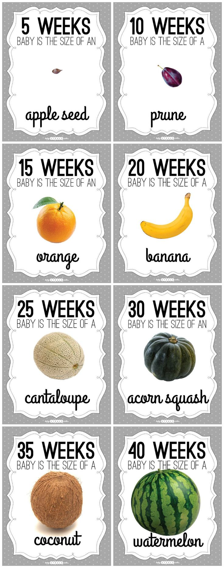Pregnancy Fruit Free Printable week by week. So cute for pregnant moms to share how far along they are!
