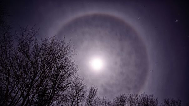 From rainbows to fogbows: How do these unique phenomena form?