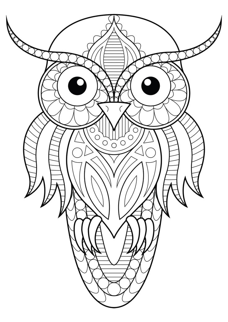 34+ Printable easy owl coloring pages info