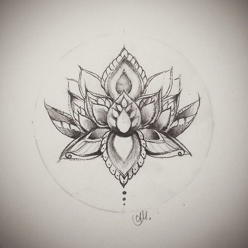 lotus flower drawing - Google Search