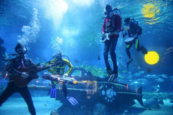 Underwater Music Festival In Florida Keys (USA)
