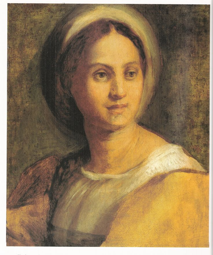 Andrea del Sarto, Drawing of a Young Woman, date unknown, Staatliche Museen - Berlin.  Colour image in Antonio Natali, Del Sarto (New York: Abbeville, 1999), p. 140  Black and white image in Bildindex—http://www.bildindex.de(downloaded February 2009)