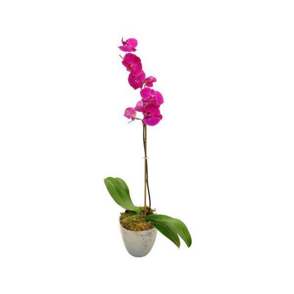 Purple Orchid Flower Arrangement