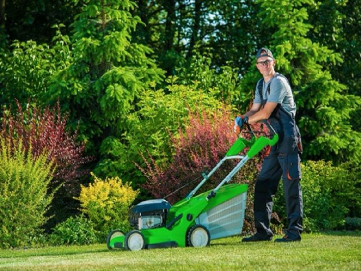 At Fox Mowing Victoria, we are experienced lawn movers