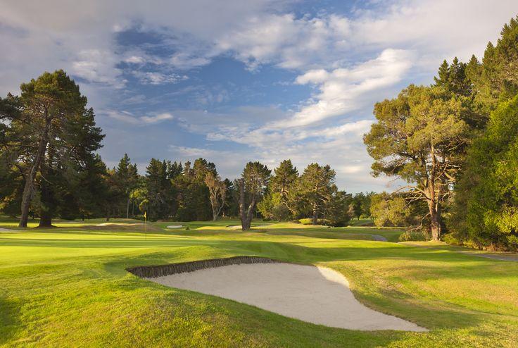 2nd green, Wairakei Golf + Sanctuary