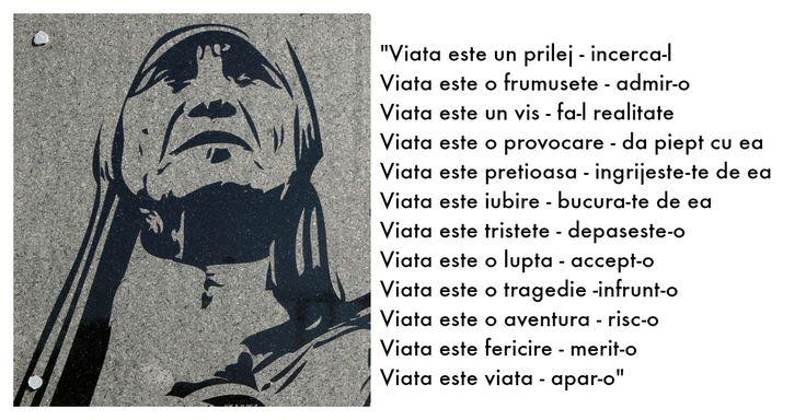 Aceste 15 citate de la Maica Tereza iti vor aduce liniste in suflet