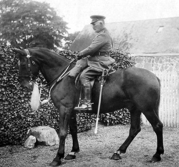 Leicestershire Yeomanry : Dress Regs - I like this horse. I mean, I really, really, like this horse. Neat little website too.