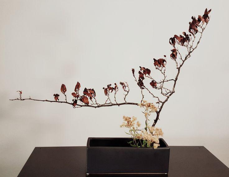 """""""Graceful Transition""""  #Ikebana by Michiko"""