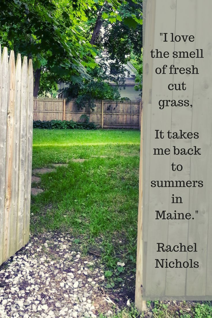 Availability Summers in Maine are a gift! Come stay with us at Sadler House in Rockland and discover how wonderful it is, for yourself. <a class=