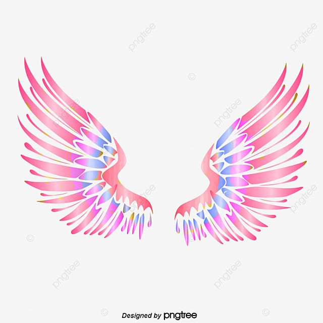 Colorful Angel Wings Wing Feather Hand Painted Png Transparent Clipart Image And Psd File For Free Download Angel Wings Art Angel Wings Background Angel Wings Png