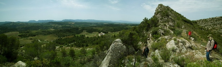 Great views from the restored path in Priorat, southern Catalonia