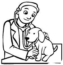 A brigada de salud canina de Uniguajira se sumaron voluntarios de Brasil, Méjico y Austria