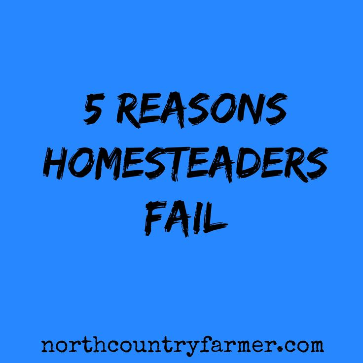 Having spent my life in the rural areas, making a living farming and homesteading, I have seen many people come to the country with big dreams of living the homesteader's life. Some people make a go of it and some don't. I've watched enough people fail at it that I thought it might be helpful to share some observations I've made. Here is an opportunity to learn from other people's mistakes.