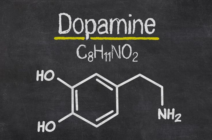 De onde vem a sua motivação? Conheça a dopamina, a molécula responsável pela sua alegria, entusiasmo, vontade de viver e prazer. http://www.eusemfronteiras.com.br/dopamina-a-molecula-da-motivacao/ #eusemfronteiras #saúde #dopamina #motivação