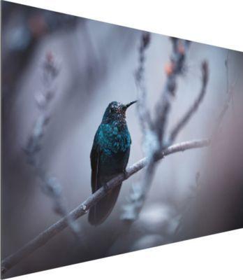 Alu Dibond Bild - Kolibri im Winter - Quer 2:3 50x75-22.00-PP-ADB-WH Jetzt bestellen unter: https://moebel.ladendirekt.de/dekoration/bilder-und-rahmen/bilder/?uid=1272a5cf-e878-59b1-a28e-fbf377b14494&utm_source=pinterest&utm_medium=pin&utm_campaign=boards #heim #bilder #rahmen #dekoration